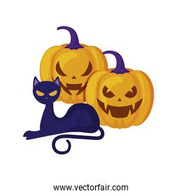 halloween pumpkins with cat isolated icon