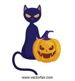 halloween pumpkin with cat isolated icon