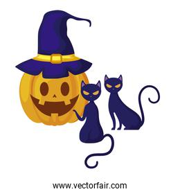 halloween pumpkin with witch hat and cats