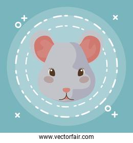 head of cute mouse baby animal