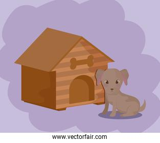 cute puppy dog animal baby with house