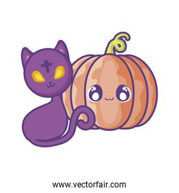 cute cat with pumpkin on white background