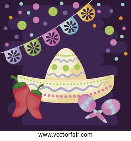 mexican hat with maraca and desert in the background