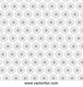 Floral design. garden illustration.  white background