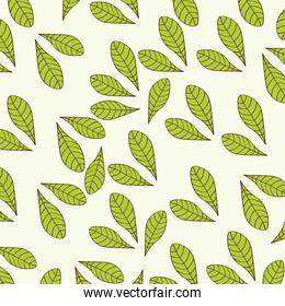 Leaves background design. Floral and Garden icon. vector graphic