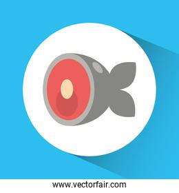 fish icon. Nutrition and Organic food design. Vector graphic