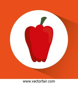 pepper icon. Nutrition and Organic food design. Vector graphic