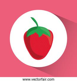 Strawberry icon. Nutrition and Organic food design. Vector graph