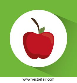 Apple icon. Nutrition and Organic food design. Vector graphic