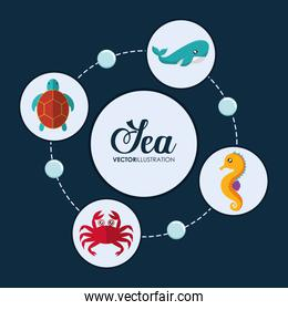 crab, tortoise, whale and sea horse icon. Vector graphic