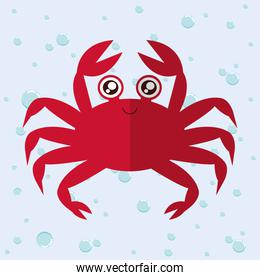 Crab cartoon over bubbles background. Vector graphic