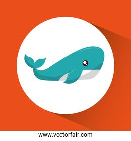 Whale cartoon over circle icon. Vector graphic