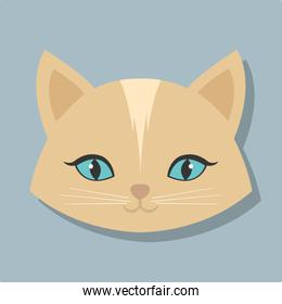 pet related icon image