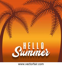 hello summer design