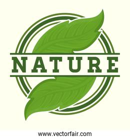 nature and leaves design