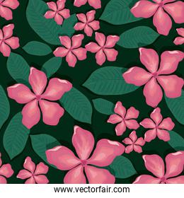 seamless pattern tropical flower background