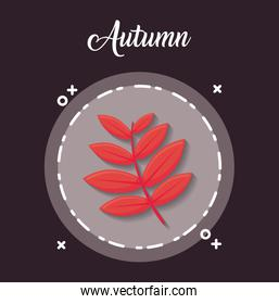 autumn season design