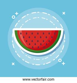 watermelon icon image