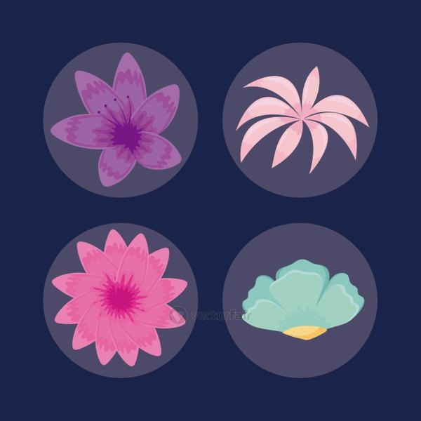 set of tropical leafs icons