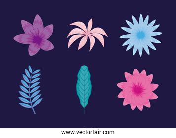 set of tropical leafs and flowers