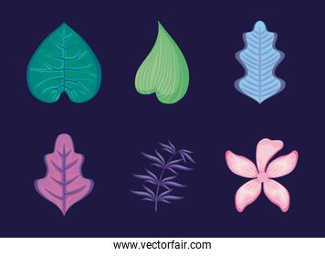 set of tropical leafs and flower
