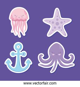 cute octopuses with starfish and anchor