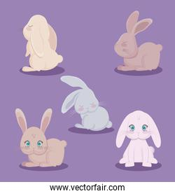 group of cute rabbits animals