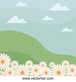 landscape nature with flowers