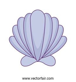 sea shell isolated icon