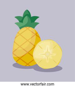 fresh pineapples fruits isolated icon