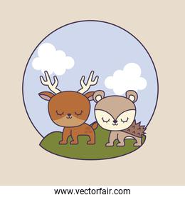 cute porcupine with reindeer in landscape