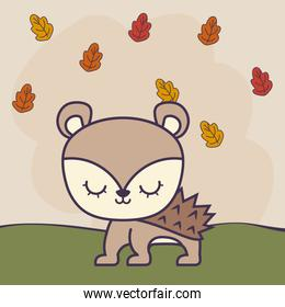 cute porcupine in grass with leafs