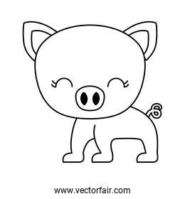 cute piggy animal isolated icon