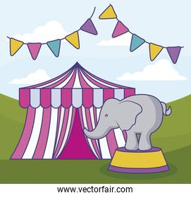 circus tent with elephant and garlands