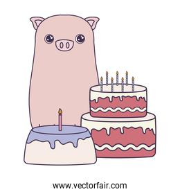 cute piggy with cakes of birthday