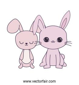 cute rabbits animals isolated icon