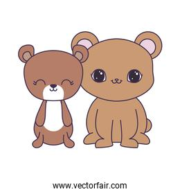cute bears animals isolated icon