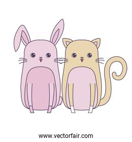 cute rabbit with cat animals character