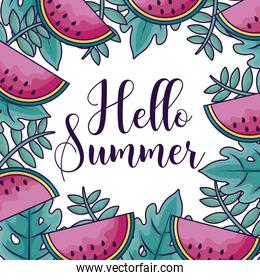 summer holiday pattern of watermelons and seaweed