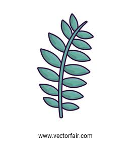 summer leaf natural isolated icon