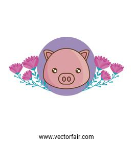 head of cute piggy in frame with flowers