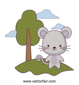 cute mouse animal in landscape