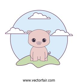 cute piggy animal in landscape natural isolated icon