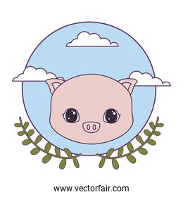 head of cute piggy in frame circular with crown of leafs