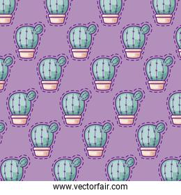 pattern patches of cactus in pots plants