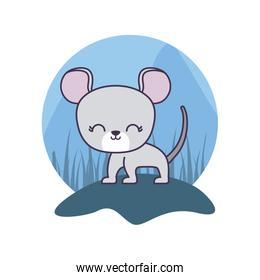 cute mouse animal isolated icon