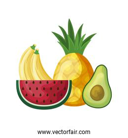slice of watermelon with set fruits