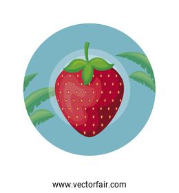 strawberry in frame circular with leafs tropicals