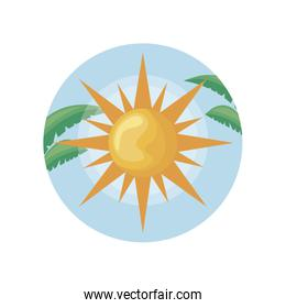 hot sun in frame circular with leafs tropicals