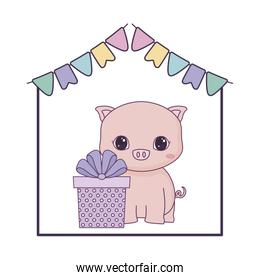cute piggy animal with gift box present and garlands